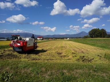 農業法人「信州農家」を通じた地域農業の活性化